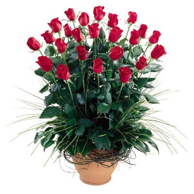 Kastamonu uluslararası çiçek gönderme  10 adet kirmizi gül cam yada mika vazo