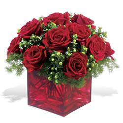 Kastamonu çiçek yolla  9 adet kirmizi gül cam yada mika vazoda