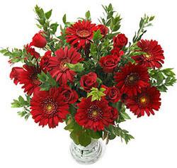 5 adet kirmizi gül 5 adet gerbera aranjmani  Kastamonu hediye çiçek yolla