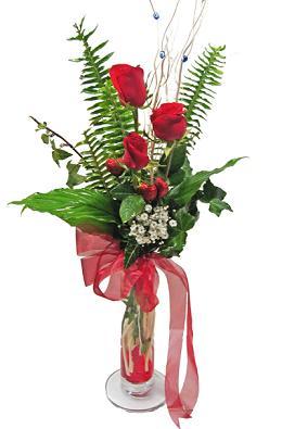 Çiçek gönderin cam vazoda 3 gül çiçekleri  Kastamonu çiçek siparişi sitesi
