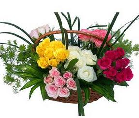 Kastamonu ucuz çiçek gönder  35 adet rengarenk güllerden sepet tanzimi