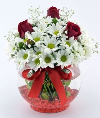 Fanusta 3 Gül ve Papatya  Kastamonu internetten çiçek satışı