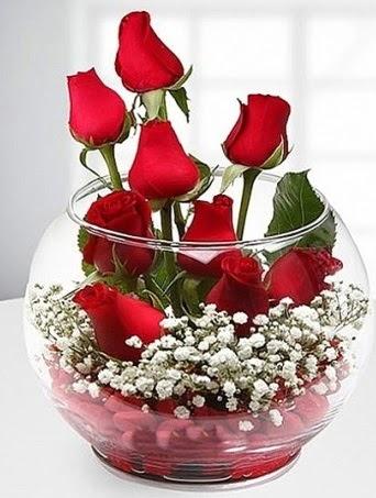 Kırmızı Mutluluk fanusta 9 kırmızı gül  Kastamonu çiçek siparişi sitesi