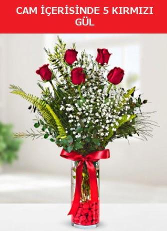 Cam içerisinde 5 adet kırmızı gül  Kastamonu çiçek siparişi sitesi