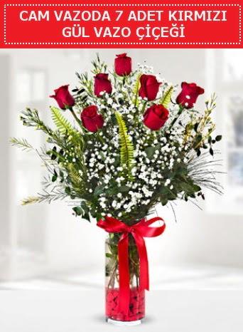 Cam vazoda 7 adet kırmızı gül çiçeği  Kastamonu çiçek gönderme sitemiz güvenlidir