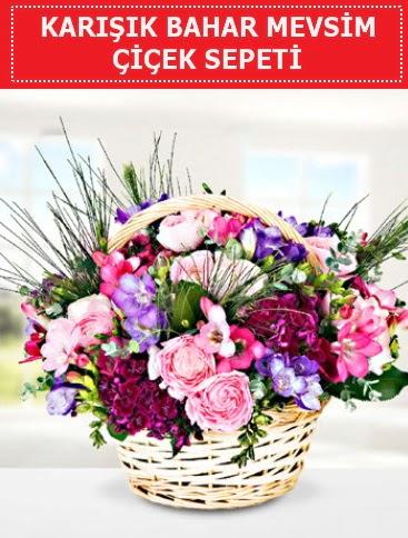 Karışık mevsim bahar çiçekleri  Kastamonu ucuz çiçek gönder