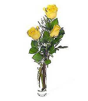Kastamonu internetten çiçek siparişi  3 adet kalite cam yada mika vazo gül