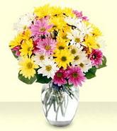 Kastamonu internetten çiçek siparişi  mevsim çiçekleri mika yada cam vazo