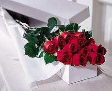 Kastamonu çiçek satışı  özel kutuda 12 adet gül