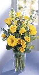 Kastamonu online çiçek gönderme sipariş  sari güller ve gerbera cam yada mika vazo