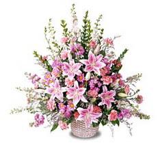 Kastamonu çiçek siparişi sitesi  Tanzim mevsim çiçeklerinden çiçek modeli