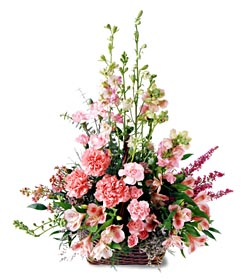 Kastamonu ucuz çiçek gönder  mevsim çiçeklerinden özel