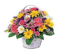 Kastamonu çiçek , çiçekçi , çiçekçilik  mevsim çiçekleri sepeti özel