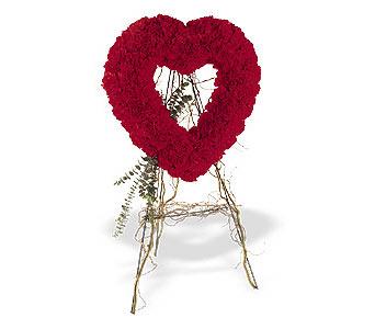 Kastamonu internetten çiçek satışı  karanfillerden kalp pano