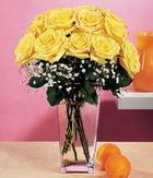 Kastamonu internetten çiçek satışı  9 adet sari güllerden cam yada mika vazo