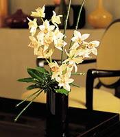 Kastamonu çiçekçiler  cam yada mika vazo içerisinde dal orkide