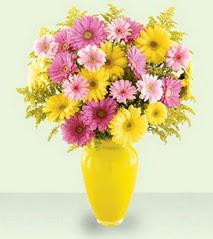 Kastamonu cicekciler , cicek siparisi  cam yada mika vazoda kir çiçekleri özel