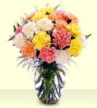 Kastamonu online çiçek gönderme sipariş  cam yada mika vazoda renkli karanfiller