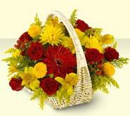Kastamonu 14 şubat sevgililer günü çiçek  sepette mevsim çiçekleri