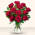 Kastamonu çiçek yolla  10 adet gül cam yada mika vazo da