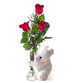 oyuncak ve 3 adet gül  Kastamonu çiçek siparişi sitesi