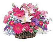 küçük karisik özel sepet   Kastamonu çiçek online çiçek siparişi