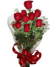 9 adet kaliteli kirmizi gül   Kastamonu online çiçekçi , çiçek siparişi