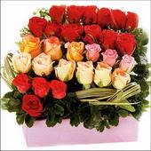15 adet renkli gül ve cam   Kastamonu çiçekçi mağazası