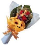 güller ve gerbera çiçekleri   Kastamonu çiçek gönderme sitemiz güvenlidir