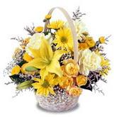 sadece sari çiçek sepeti   Kastamonu çiçek gönderme sitemiz güvenlidir