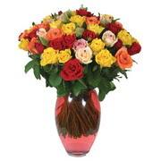 51 adet gül ve kaliteli vazo   Kastamonu çiçek gönderme sitemiz güvenlidir