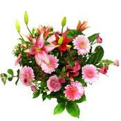 lilyum ve gerbera çiçekleri - çiçek seçimi -  Kastamonu çiçek gönderme