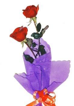 2  adet kirmizi gül buketi   Kastamonu çiçek , çiçekçi , çiçekçilik