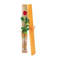 ince  kutuda  1  gül   Kastamonu çiçek yolla