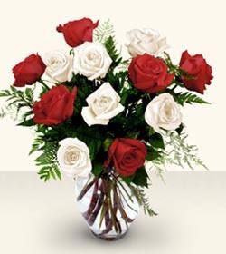 Kastamonu uluslararası çiçek gönderme  6 adet kirmizi 6 adet beyaz gül cam içerisinde