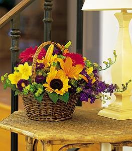 Kastamonu cicekciler , cicek siparisi  karisik sepet içinde mevsimsel çiçekler