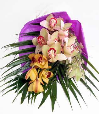 Kastamonu cicekciler , cicek siparisi  1 adet dal orkide buket halinde sunulmakta