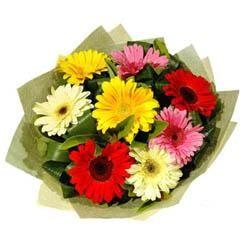 9 adet karisik gerbera demeti  Kastamonu çiçek mağazası , çiçekçi adresleri