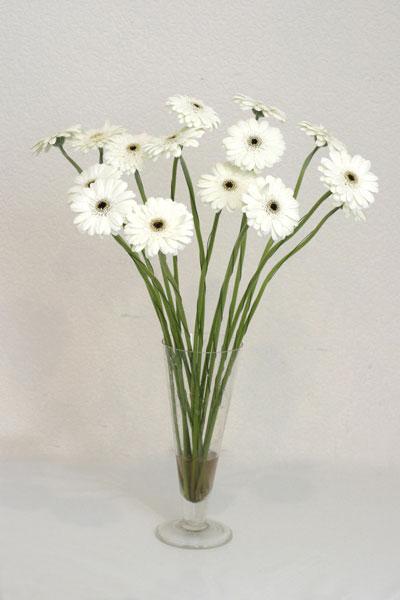 Kastamonu çiçek mağazası , çiçekçi adresleri  cam vazo içerisinde 17 adet sade gerbera