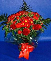 Kastamonu hediye çiçek yolla  3 adet kirmizi gül ve kir çiçekleri buketi