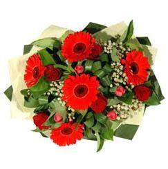 Kastamonu ucuz çiçek gönder   5 adet kirmizi gül 5 adet gerbera demeti