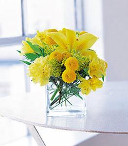 Kastamonu ucuz çiçek gönder  sarinin sihri cam içinde görsel sade çiçekler