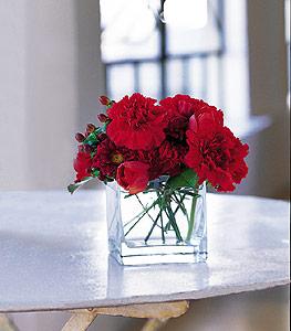 Kastamonu ucuz çiçek gönder  kirmizinin sihri cam içinde görsel sade çiçekler