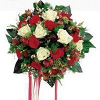 Kastamonu ucuz çiçek gönder  6 adet kirmizi 6 adet beyaz ve kir çiçekleri buket