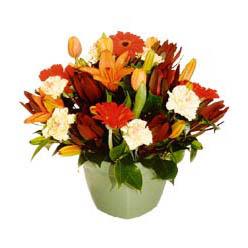 mevsim çiçeklerinden karma aranjman  Kastamonu çiçek yolla , çiçek gönder , çiçekçi