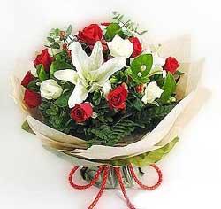 güller ve kazablanklardan görsel bir buket  Kastamonu internetten çiçek satışı