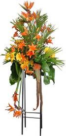 Kastamonu çiçek siparişi sitesi  perförje tanzimi dügün nikah ve açilislara
