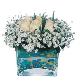 Kastamonu çiçekçi mağazası  mika yada cam içerisinde 7 adet beyaz gül
