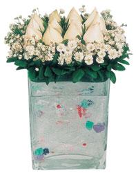 Kastamonu çiçekçi mağazası  7 adet beyaz gül cam yada mika vazo tanzim