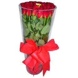Kastamonu çiçek online çiçek siparişi  12 adet kirmizi gül cam yada mika vazo tanzim